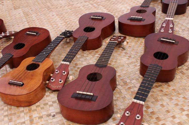 Learn to play the Ukelele