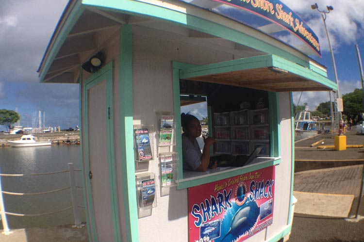 The Shark Shack for Check-in