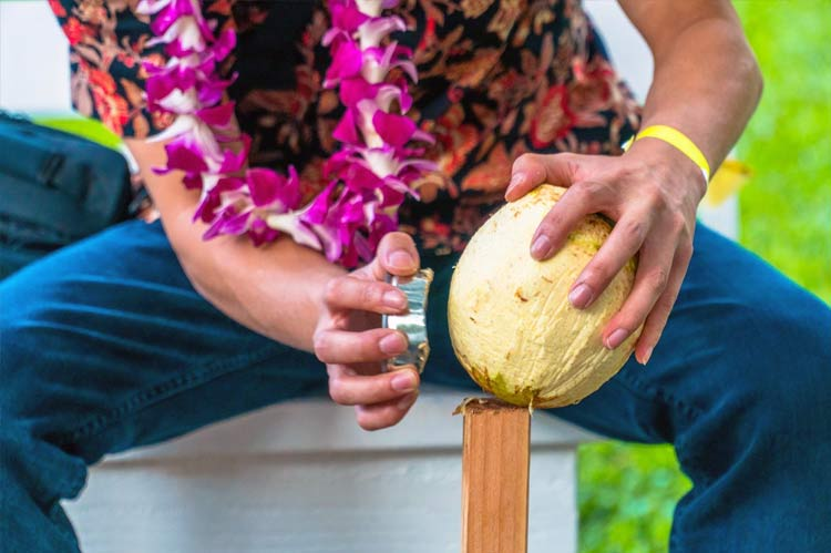 Learn to Husk a Coconut