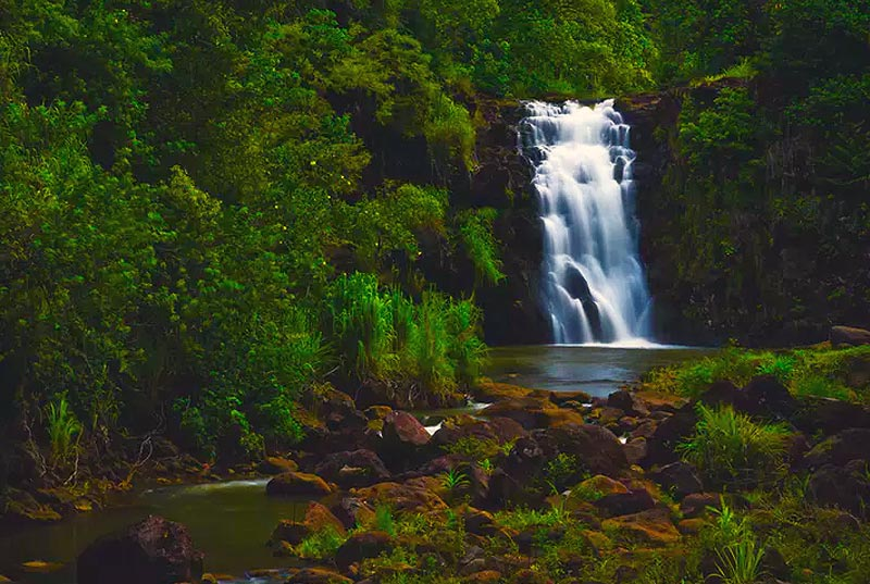 Waimea Valley Waterfall
