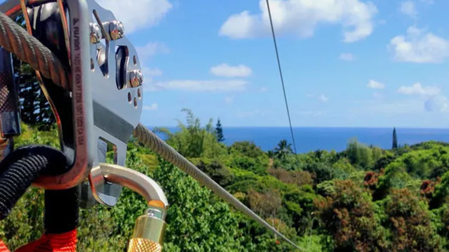 Maui Jungle Zipline