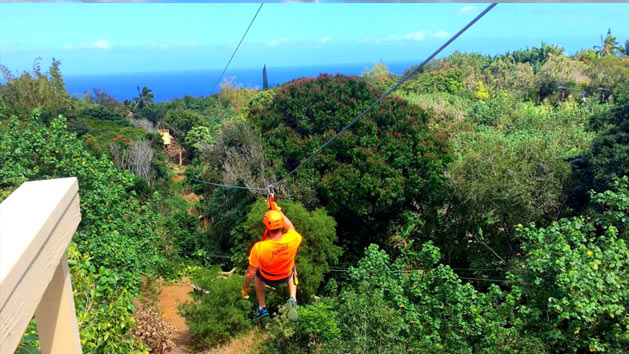 Zipline with an Ocean View