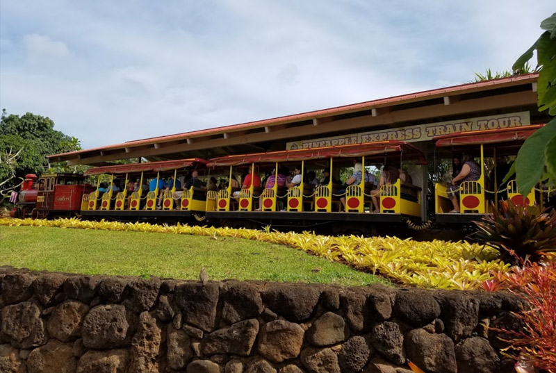 Dole Plantation Train Ride